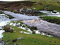 Dye Water, Byrecleugh - geograph.org.uk - 659010.jpg