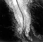 Eagle Glacier, valley glacier terminus, August 23, 1964 (GLACIERS 6031).jpg