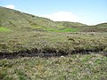 Edge of Ruabhal (or Rueval) - geograph.org.uk - 1467125.jpg