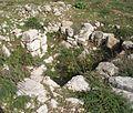 El-Khirbe-synagogue-47.jpg