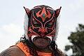 El Felino Mask.jpg
