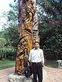 El arbol de la diversidad en Parque guembe.JPG