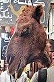Em - Camelus dromedarius head - 1.jpg