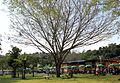 Embu das Artes (7964499224).jpg