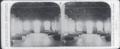 Enfermaria especificamente organizada para o isolamento e o tratamento dos doentes de peste bubónica no Porto (1899) - Museu de História da Medicina Maximiano Lemos (FMUP).png