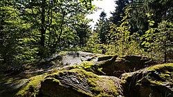 Entenbühl Gipfelfels.jpg