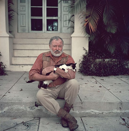 Ernest-Hemingway-with-cat-1954.jpg