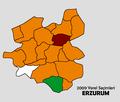 Erzurum2009Yerel.png