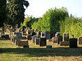 Essingen Judenfriedhof 2.jpg