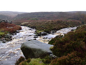 River Etherow - The Etherow (left), joined by the Black Cloughs from Bleaklow.