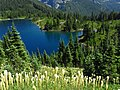 Eunice Lake at Mount Rainier National Park in Washington 2.jpg
