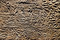 Exhibition I am Ashurbanipal king of the world, king of Assyria, British Museum (45061365195).jpg