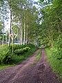 Före detta Falkenbergs Järnväg nära Karkashult, riktning mot Limmared - panoramio.jpg