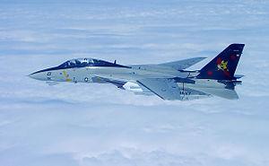 F-14B VF-11 Port - 2005.jpg