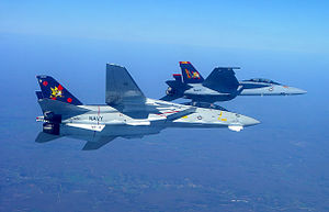 F-14B and FA-18F of VF-VFA-11 in left Bank - 2005.jpg