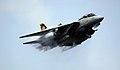 F-14 Tomcat VF-31 2006.jpg