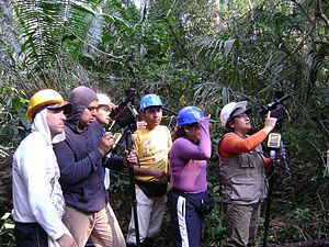 Community forestry - National Forest Inventory of Peru (Source: Jorge Mattos, Wikimedia Commons)