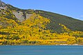 Fall at Barrier Lake - Kananaskis - panoramio - Jack Borno.jpg