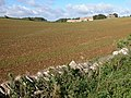 Farm buildings on Naunton Downs - geograph.org.uk - 254927.jpg