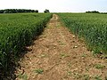 Farmland near Ampney St Peter - geograph.org.uk - 22389.jpg