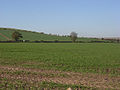Farmland near Collingbourne Kingston - geograph.org.uk - 274251.jpg