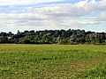Farmland south of Woolhampton - geograph.org.uk - 29419.jpg