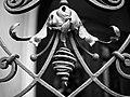 Fence (227905275).jpeg