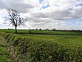 Fields near to Tur Langton - geograph.org.uk - 404676.jpg