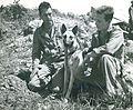 """First Lieutenant Merril F. McLane, Corporal Howard L. Cox, and """"Motobu"""", Okinawa, 1945 (6989335680).jpg"""