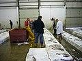 Fischauktion Kinlochbervie.jpg