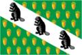 Flag of Verkhnee Dubrovo (Sverdlovsk oblast).png