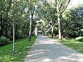 Flevopark pic4.JPG