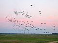 Flickr - The U.S. Army - Airborne Soldiers.jpg