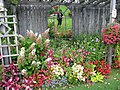 Floral reflection (6163994819).jpg