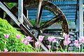 Flowerwheel (7283081338).jpg