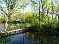 Footbridge to small island in Kalachevkyi Park, Rokytne 02.jpg