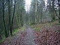Footpath, Woodcockair - geograph.org.uk - 298819.jpg