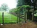 Footpath at Casterton Hall - geograph.org.uk - 823637.jpg