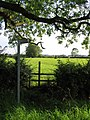 Footpath to Wyfordby - geograph.org.uk - 1294697.jpg