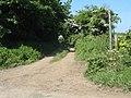 Footpath towards Tyddyn-y-Pandy - geograph.org.uk - 1337398.jpg