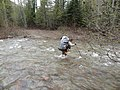 Fording Dean Creek on the Spotted Bear Ranger District in May.jpg