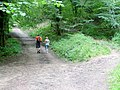 Forest footpath users, 3 - geograph.org.uk - 1441595.jpg