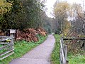Forest of Dean cycleway - geograph.org.uk - 1560330.jpg