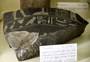 Water clock - Fragment of a basalt water-clock, with evaporation time markers on interior as dots on djed and was hieroglyphs. Late period, 30th Dynasty. From Egypt. The Petrie Museum of Egyptian Archaeology, London