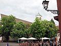 Freiburger Rathausplatz mit blühenden Kastanien und St. Martin.jpg