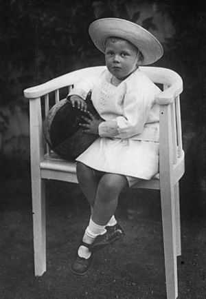 Friedrich Franz, Hereditary Grand Duke of Mecklenburg-Schwerin - Image: Friedrich Franz V