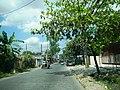 FvfAngonoRizal6504 06.JPG