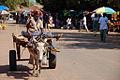 Gambia DSC 1512.jpg