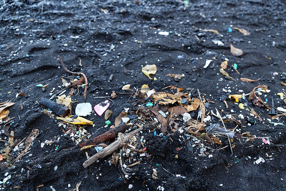 Garbage Black sand beach Maui Hawaii Road to Hana (45690820912)