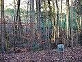 Gedenktafel für den am 11.11.1967 verunglückten Waldarbeiter August Todt (2013) - panoramio.jpg
